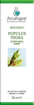 POPULUS NIGRA 50 ML GEMMOD. BIO | Artemisiaerboristeria.it - 1875