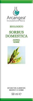 SORBUS DOMESTICA BIO 50 ML GEMMOD.| Artemisiaerboristeria.it - 1887
