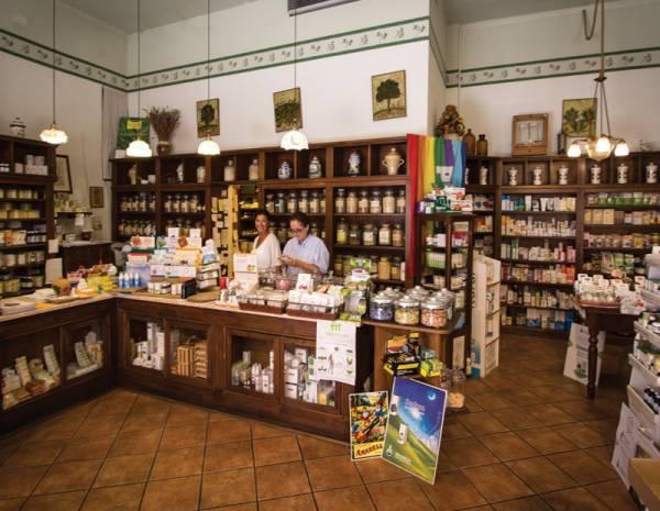 Diplomata Erboristeria Artemisia è una storica erboristeria nel centro di Rimini.   Artemisiaerboristeria.it - 2250